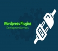 WordPress Plugin Development services Company in India
