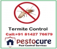 Termite Control Services in Kukatpally Hyderabad