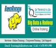 Become a Big data and Hadoop Analyst with training provided