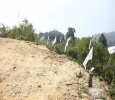 Best Hillview Plots for Sale with Loan arrangements at Kodai