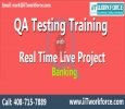 QA Real-time Project Workshop on Banking domain.