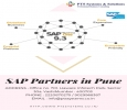 SAP Partners In Pune Has The Answer To Everything.