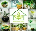 Best Plant Nursery in Bangalore-Garden Accessories for Sale