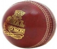 BDM Special Crown Cricket Ball - Sabkifitness.com