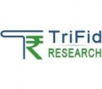 Get Accurate Currency Trading Tips | TriFid Research