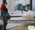 mosquito control services in Bangalore