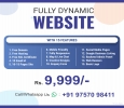 Get Mobile Friendly Dynamic Web Design Services at Rs9999