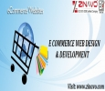 E commerce Web Design & Development Service