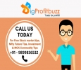 Earn 5000 Per Day From Stock Market Tips By Bigprofitbuzz
