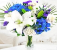 OyeGifts - Send Mothers Day Flowers To Ludhiana