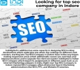 Looking for top seo company in Indore