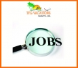 Digital Marketing Executive Jobs In TFG