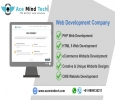 Web Development Company in Delhi