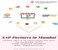 Things You Must Know About Sap Partners In Mumbai