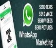 whatsapp sender software