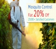 Long-lasting mosquito control treatments in Whitefield Banga