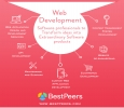 Bestpeers Infosystem | Software and Web Development Company