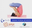 Asanyoga is Best School for Yoga in Ahmedabad