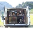 Pet Transportation in Chennai - Best Pet Transportation