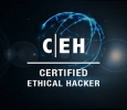 Get the best Certified Ethical hacking Courses in USA