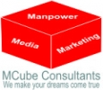 Manpower consultants