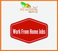 Tourism Company Hiring Now TFG Vacations India Pvt. Ltd. (IS