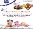 Best Ice Cream Shop in Chandigarh