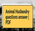 Animal husbandry coaching