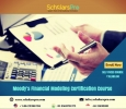 financial modeling course