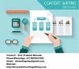 Top Class Content Writing Services in Jaipur Region