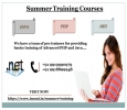 I-Muni IT Solutions Provides Summer Training Courses For JAV