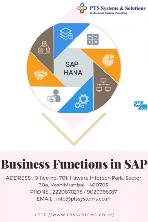The Secret Of Business Functions In Sap