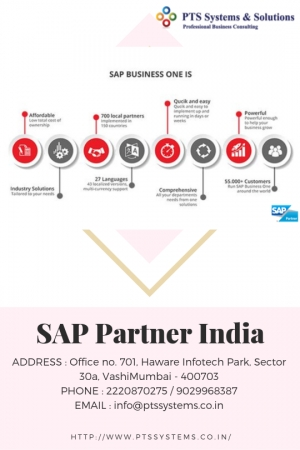 Sap Partner India Secrets