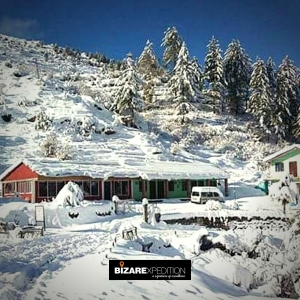 Auli Trekking Packages