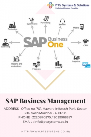 Advantage Of Sap Business Management