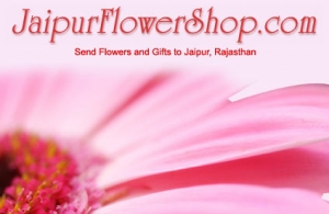 Online Delivery of Flowers & Gifts for Birthday and Valentin