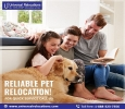 Relocate Your Pets With You