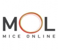 MICE Hotel Booking | Hotel Travel Incentives & Events