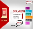 Best SEO and Digital Marketing Company in Bangalore