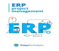 ERP [Enterprise Resource Planning] System Development at Web