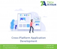Cross-Platform Mobile Development Company