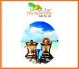 Get the best and trustworthy trip packages from TFG Holidays