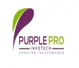 WEBSITE DEVELOPMENT IN PURPLEPRO IT SOLUTIONS