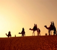 Affordable Jaisalmer Tour Packages By Royal Adventure Tour