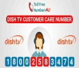 Get Correct Dish TV Customer Care Number