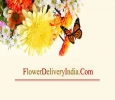 Flower Delivery in India Same Day – Free Shipping