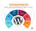 Custom WordPress Development India