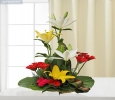 Send Flowers to Delhi, Same Day Delivery for all Occasions