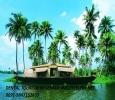 Dental Tourism in Kerala with Best Dental Cure