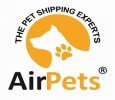 Pet Relocation Company in Delhi, India